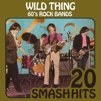 60's Rock Bands - Wild Thing — The Troggs