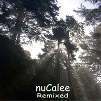 Remixed — Nucalee
