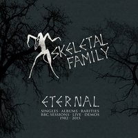 Eternal: Singles, Albums, Rarities, BBC Sessions, Live, Demos 1982-2015 — Skeletal Family