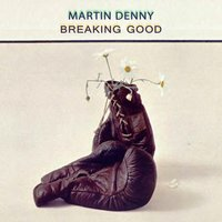 Breaking Good — Martin Denny