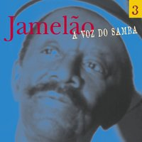 A Voz Do Samba — Jamelao
