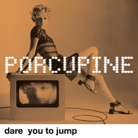 Dare You to Jump — Porcupine