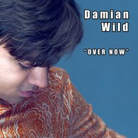 Over Now — Damian Wild