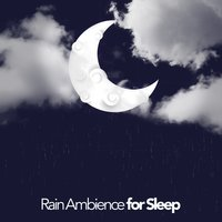 Rain Ambience for Sleep — Rain Sounds Sleep