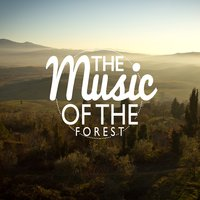 The Music of the Forest — Nature Ambience, Sonidos de la naturaleza Relajacion, Tranquil Music Sounds of Nature, Nature Ambience|Sonidos de la naturaleza Relajacion|Tranquil Music Sounds of Nature