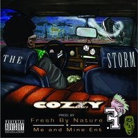 The Storm — Cozzy