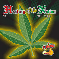 Healing Of The Nation - Volume 2 — Sizzla, Anthony B, Chezidek, Turbulence, Junior Kelly