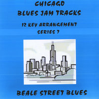 Chicago Blues Jam Tracks Series 7 — Matthews and Maz