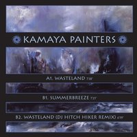 Wasteland — Kamaya Painters