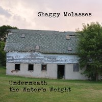 Underneath the Water's Weight — Shaggy Molasses