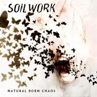 Natural Born Chaos — Soilwork