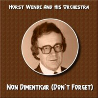 Non Dimenticar (Don't Forget) — Horst Wende & His Orchestra