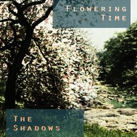 Flowering Time — The Shadows