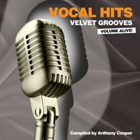 Vocal Hits Velvet Grooves Volume Alive! — сборник