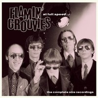 At Full Speed - The Complete Sire Recordings — The Flamin' Groovies