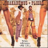 Back Against The Wall — Chaka Demus & Pliers