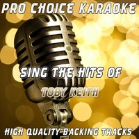 Sing the Hits of Toby Keith — Pro Choice Karaoke