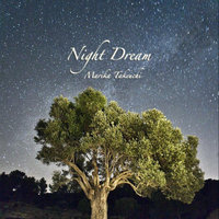 Night Dream — Marika Takeuchi