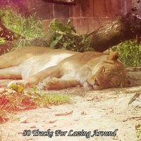 80 Tracks For Lazing Around — Nature Sounds Nature Music