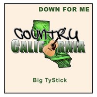 Down for Me — Big Ty-Stick