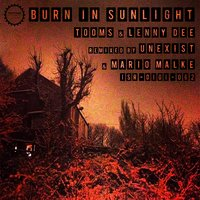 Burn in Sunlight — Tooms