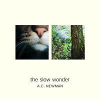 The Slow Wonder — A.C. Newman