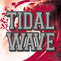 Tidal Wave — Mike McGuire
