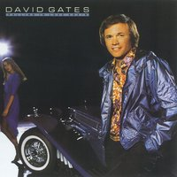 Falling In Love Again — David Gates