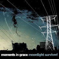 Moonlight Survived — Moments In Grace