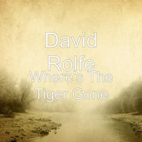 Where's the Tiger Gone — David Rolfe