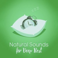 Natural Sounds for Deep Rest — Deep Sleep Nature Sounds