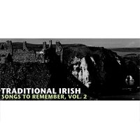 Traditional Irish Songs to Remember, Vol. 2 — сборник