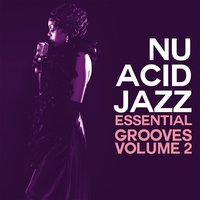Nu Acid Jazz, Vol. 2 — сборник