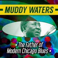 The Father of Modern Chicago Blues — Muddy Waters