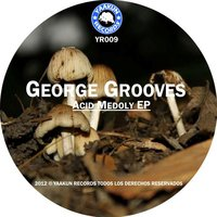 Acid Melody EP — George Grooves