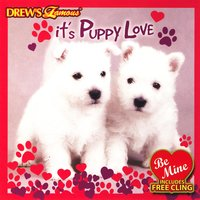 It's Puppy Love — The Hit Crew