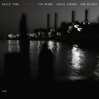 Prezens — Tom Rainey, Tim Berne, Craig Taborn, David Torn