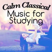 Calm Classical Music for Studying — Calm Music for Studying|Classical Study Music|Exam Study Classical Music Orchestra