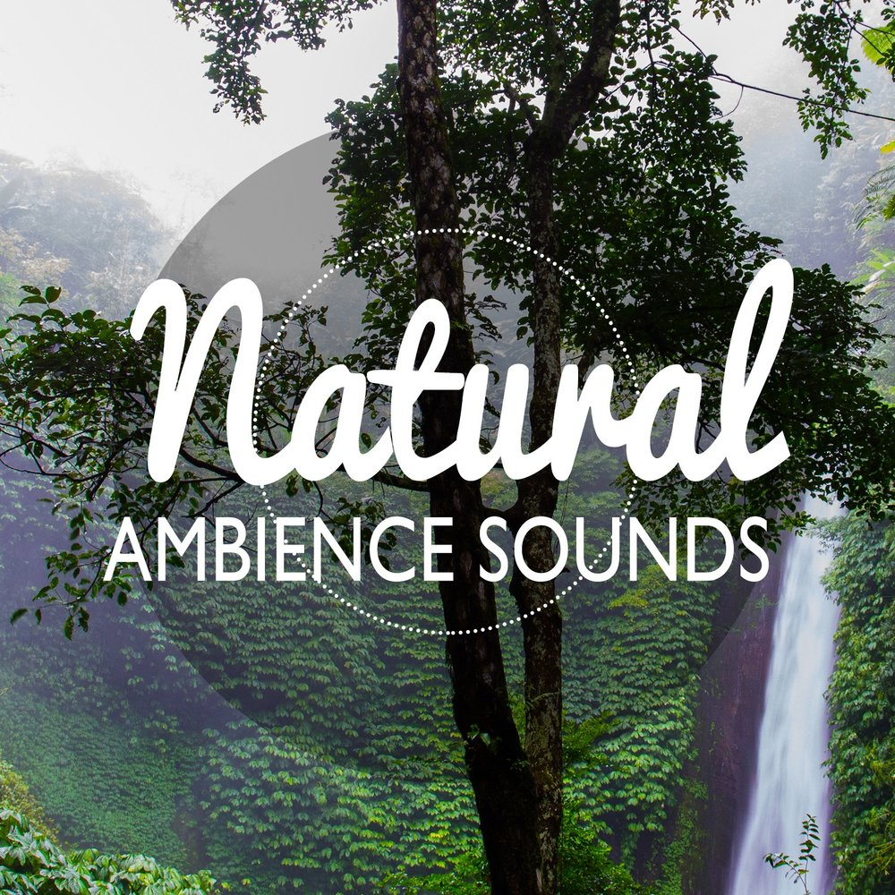Natural Ambience Sounds — Outside Broadcast Recordings