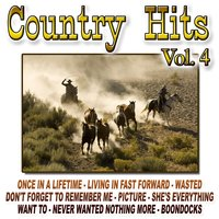 Country Hits Vol.4 — The Cowboy Band