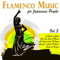 Flamenco Music for Japanese People Vol. 3 — Rafael Farina