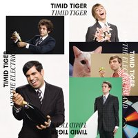 Timid Tiger And The Electric Island — Timid Tiger