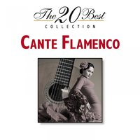 The 20 Best Collection: Cante Flamenco — сборник