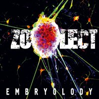 Embryolody — Zoolect