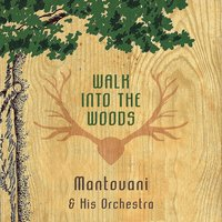 Walk Into The Woods — Mantovani & His Orchestra