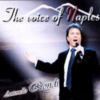 The voice of naples — Antonello Rondi