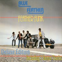 Feather Funk — Blue Feather