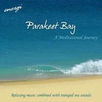 Parakeet Bay - A Meditational Journey — Energi