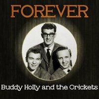 Forever Buddy Holly and the Crickets — Buddy Holly & The Crickets