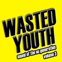 Wasted Youth, Vol. 3 — сборник